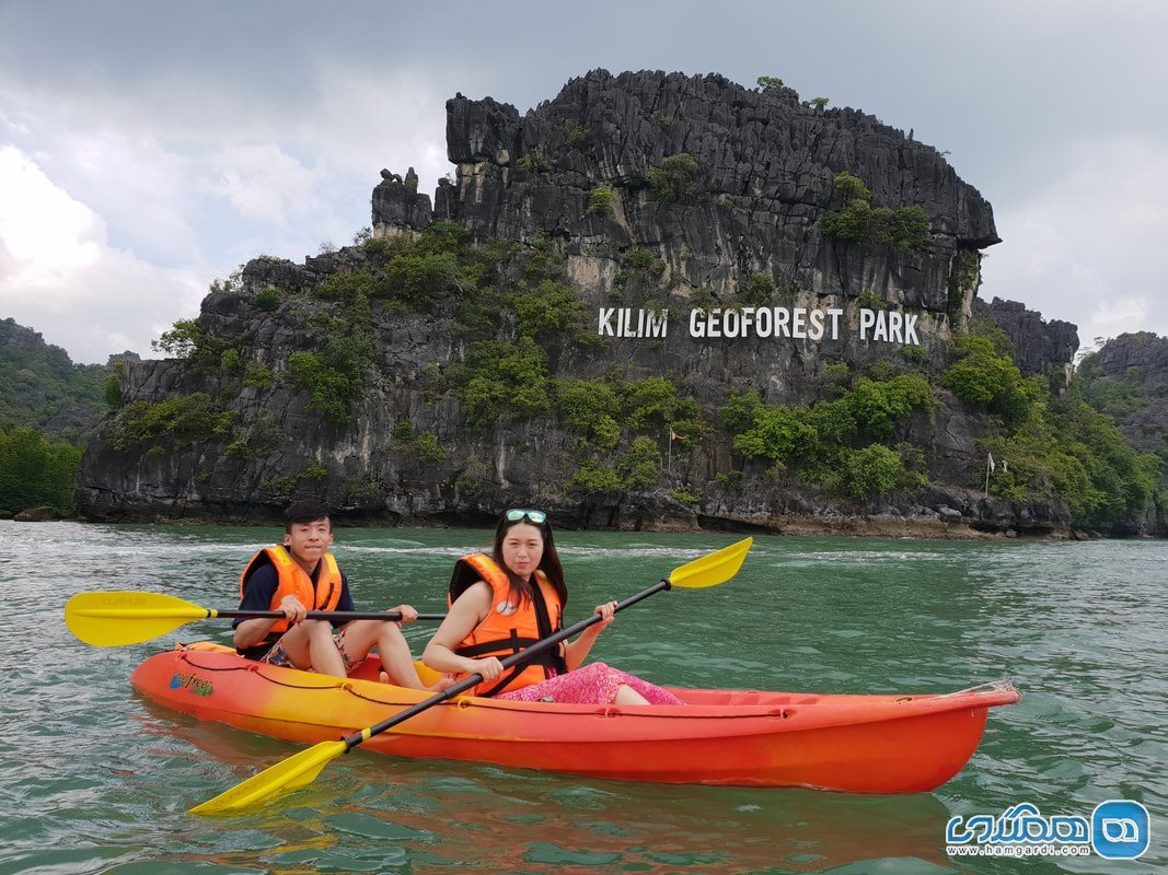 تور کایاک من گروو Mangrove Kayak Tour