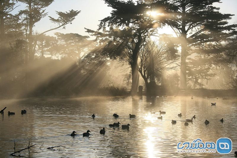 پارک گلدن گیت Golden Gate Park