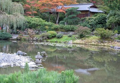 سیاتل-باغ-ژاپنی-سیاتل-Seattle-Japanese-Garden-328559